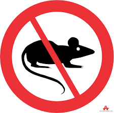 Rodent Deterrents & Pest Control