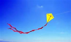 Frisbees & Kites