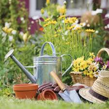 Lawn & Gardening Products