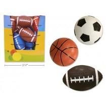 Balls & Sports Equipment