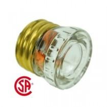 Glass Plug Fuse - 1 per pack ~ 20AMP