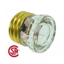 Glass Plug Fuse - 1 per pack ~ 25AMP