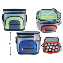 Insulated Picnic Cooler Bag with Zippered Pockets ~ 12 Can