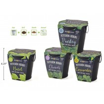 Grow Your Own Kitchen Herbs Kit