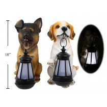 "Polyresin Dog with Battery Operated Lantern ~ 10""H"