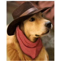 Cowboy Retriever Micro Mink Throw