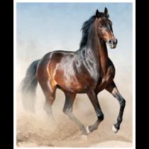 Running Free Horses Micro Mink Throw