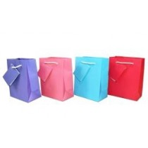 Small Gift Bags ~ Bright Matte Colors
