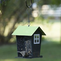 Perky-Pet Lime Seed Duo Bird Seed Feeder