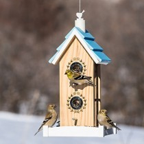Perky-Pet Birdie B & B Wood Bird Seed Feeder
