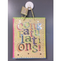 Large Gift Bags ~ Congratulations