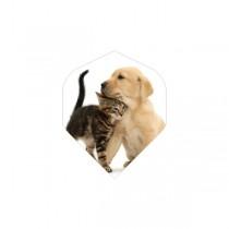 BD Flights ~ Cat & Dog
