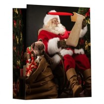 Christmas Small Gift Bag ~ Santa