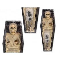 Halloween Polyfoam Mummy in Coffin Kit ~ 13 pieces