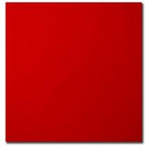Bristol Board ~ Red