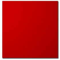 Bristol Board - Box of 50 Sheets ~ Red