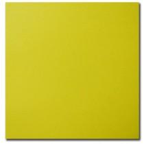 Bristol Board ~ Yellow