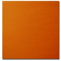 Bristol Board - Box of 50 Sheets ~ Orange