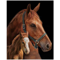 Horse with Colt Micro Mink Throw