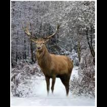 Winter Deer Micro Mink Throw
