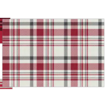 Christmas Textilene Placemats ~ Winter Plaid
