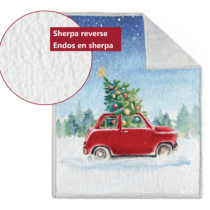 Christmas Photoreal Throws with Sherpa Back ~ Christmas Red Car