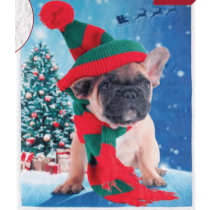 Christmas Photoreal Throws with Sherpa Back ~ Elf Puppy