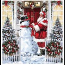 Christmas Micro Mink Throws ~ Santa Claus & Snowman