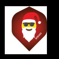 BD Flight ~ Santa with Sunglasses