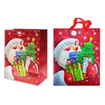 Christmas Small/Medium Gift Bag ~ Santa with Glitter