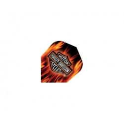 Harley Davidson Flights ~ Flames