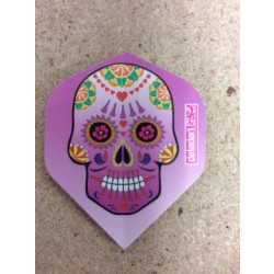 Pentathlon Flight ~ Pink Skull