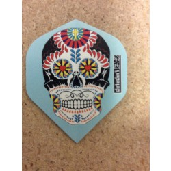 Pentathlon Flight ~ Decorated Skull on blue