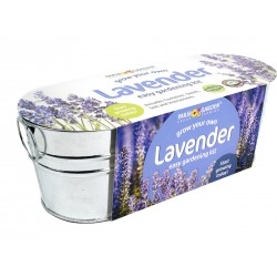 Grow Your Own Lavender & Thyme in Oval Tin Planter
