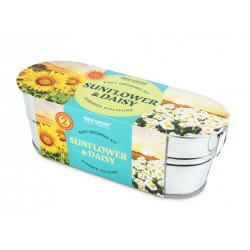 Grow Your Own Sunflower & Daisy in Oval Tin Planter