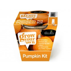 Grow Your Own Pumpkin Kit