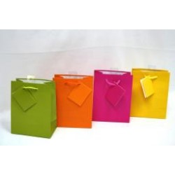 Small Gift Bags ~ Bright Solid Colors