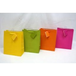 Medium Gift Bags ~ Bright Solid Colors