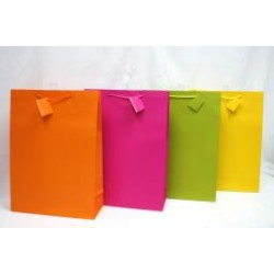 Jumbo Gift Bags ~ Bright Solids