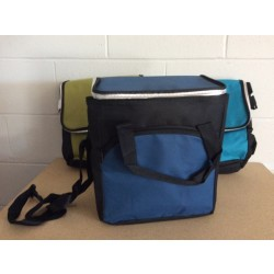 Insulated Picnic Cooler Bag ~ 18L
