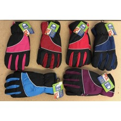 Ladies Insulated Ski Gloves