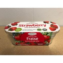 Grow Your Strawberry in Oval Tin Planter