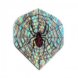 Holographic Flights ~ Spider in Web