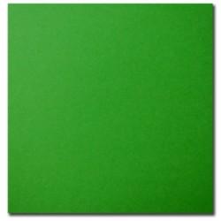 Bristol Board ~ Kelly Green {Dark}