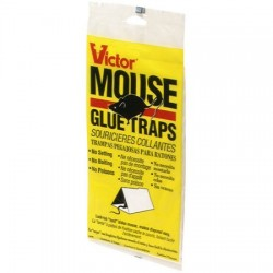 Victor Hold-Fast Mouse Glue Board ~ 2 per pack