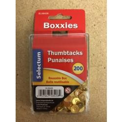 Selectum Thumbtacks - Brass Plated ~ 200 per pack