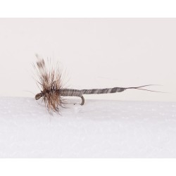 Adams - Extended Body Trout Dry Fly