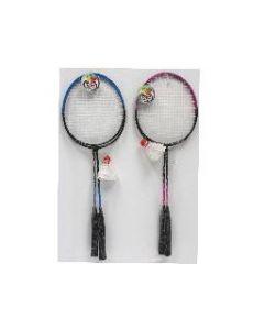 Badminton Set w/Bird ~ 2 player