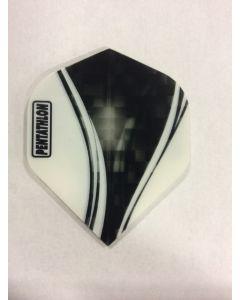 Pentathlon Flight ~ Black & White