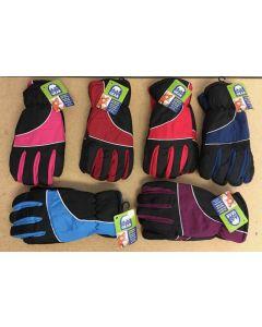 Ladies Insulated Ski Gloves